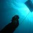 Aquatic ape hypothesis - last post by CEngelbrecht