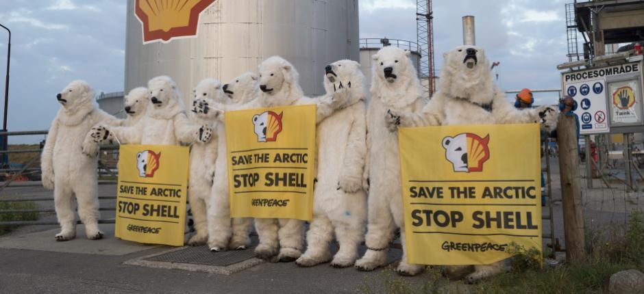 SHELL Polar BearS.jpg