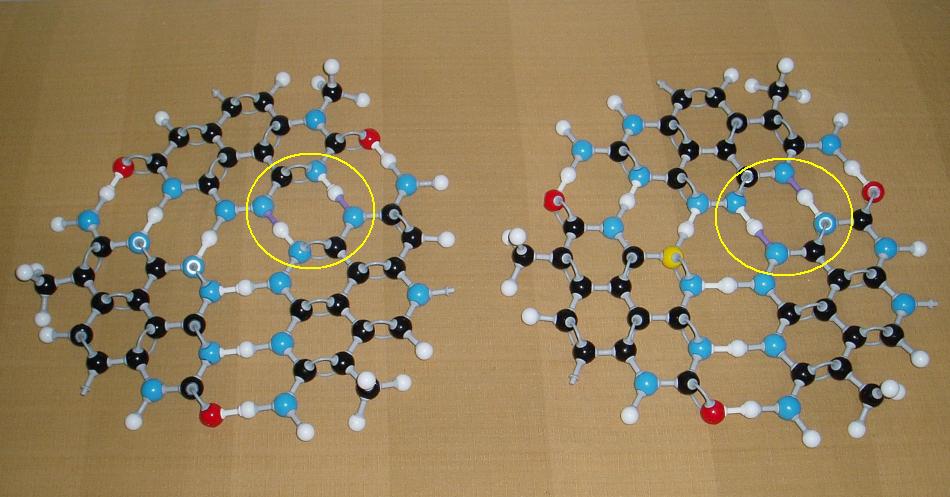 1819612577_HydrogenTautomerism.PNG.33a5eab0a91a7531b4423e0556248a1e.PNG