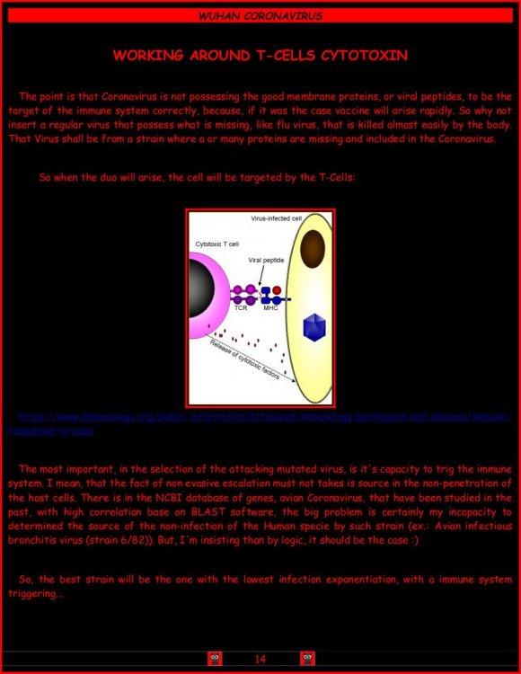 Coronavirus1.thumb.jpg.b560a2f68f1784ad8359ecfde5b8c622.jpg