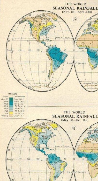 rain1.thumb.jpg.df1bb920a830d5cd74e5b62a32811d14.jpg