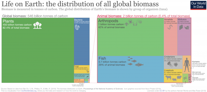 Global-Taxa-Biomass-800x359.png.9727ed75c0494ce0f7a7606633accec9.png